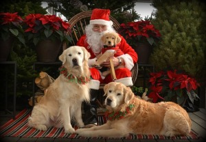 Pic With Santa-14